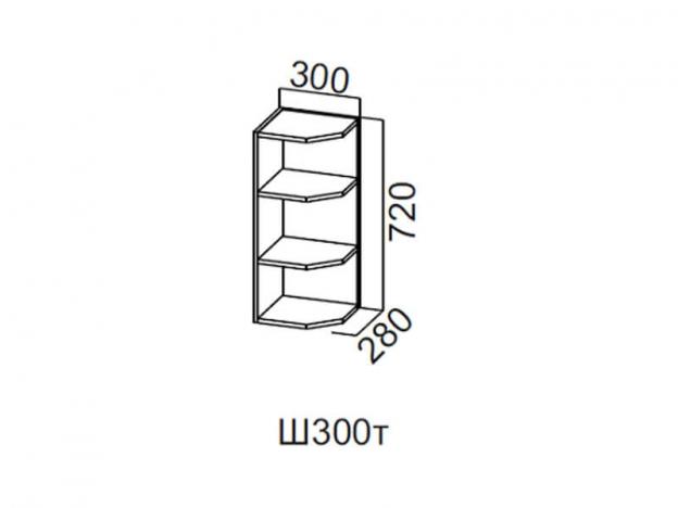 Шкаф навесной торцевой 300 Ш300т 720х300х296мм Волна